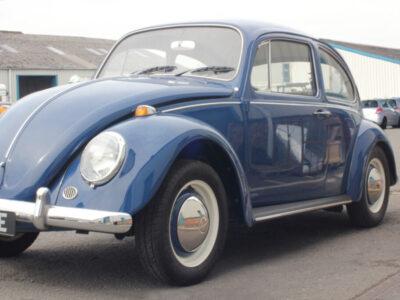 blue beetle2